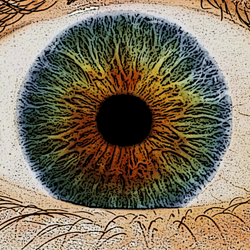 ojo-4-peq
